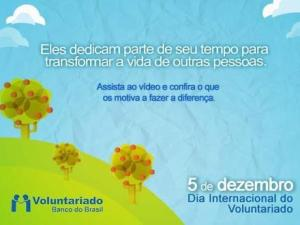 voluntario bb